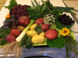 fødevarer fra haven Oktober 2015